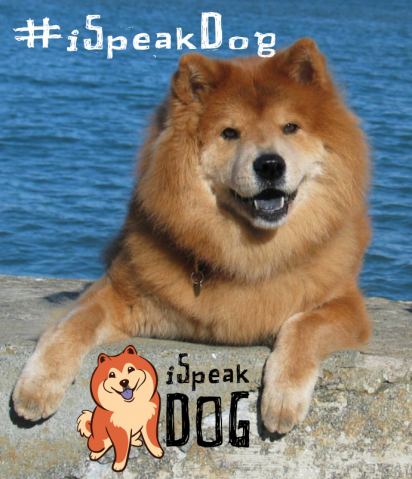 iSpeak Dog Week