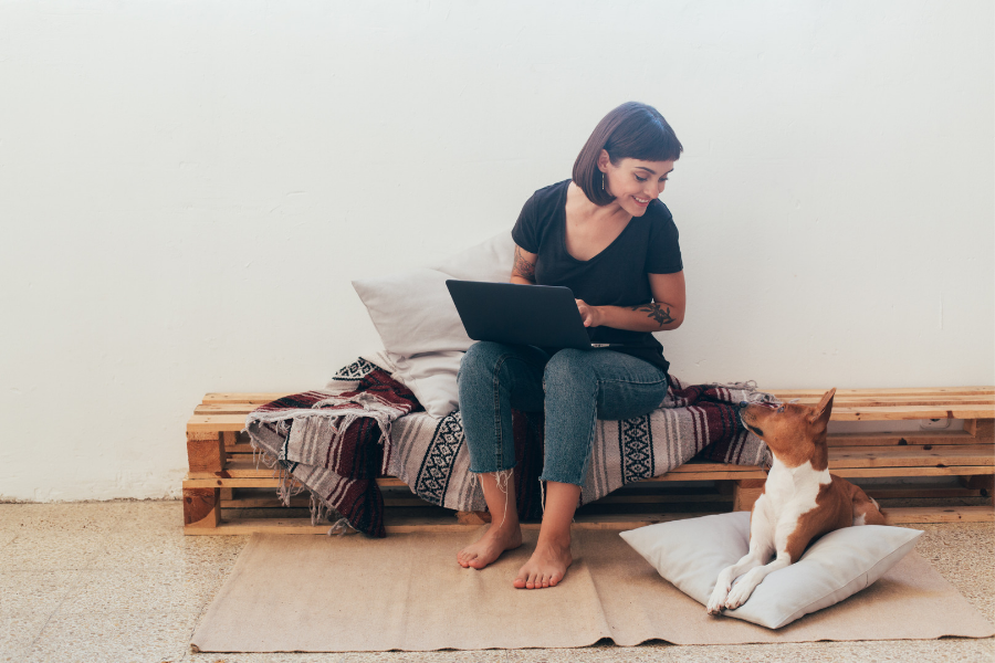 Good Words: Blogging for Dogs in 2019
