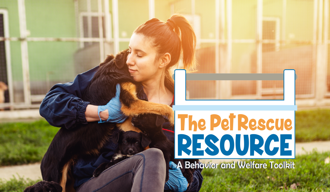 Introducing The Pet Rescue Resource