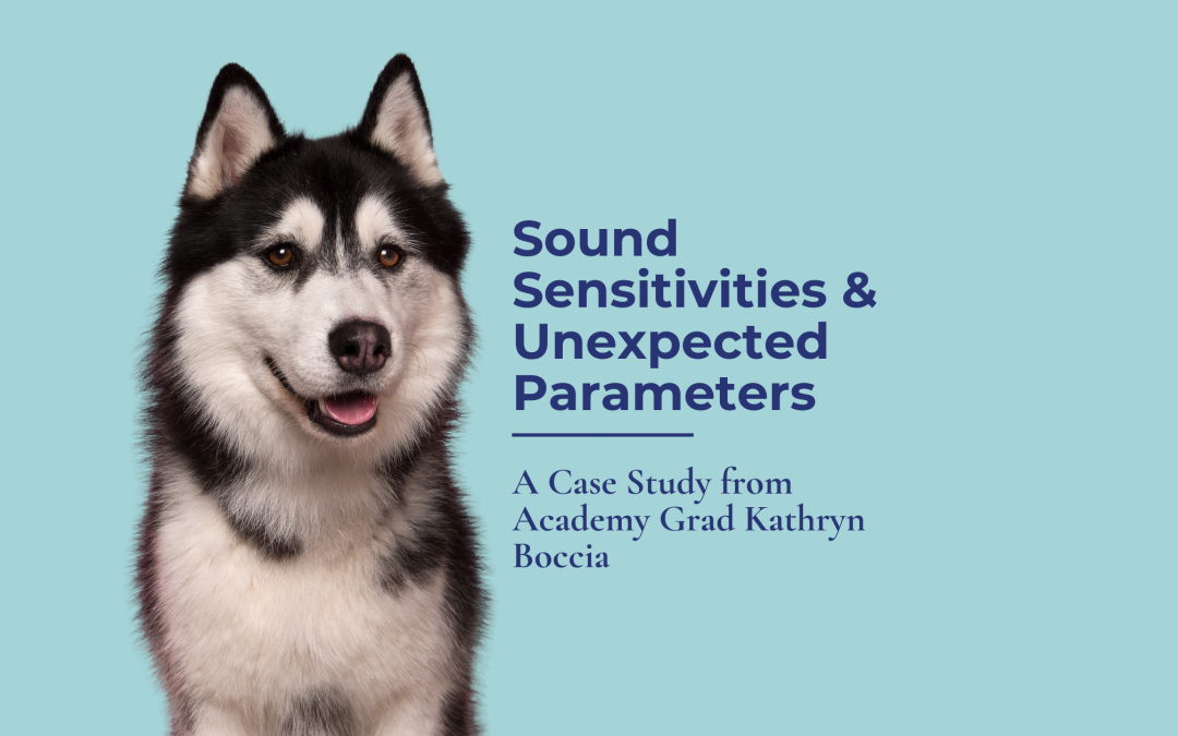Sound Sensitivities and Unexpected Parameters: A Case Study from Academy Grad Kathryn Boccia