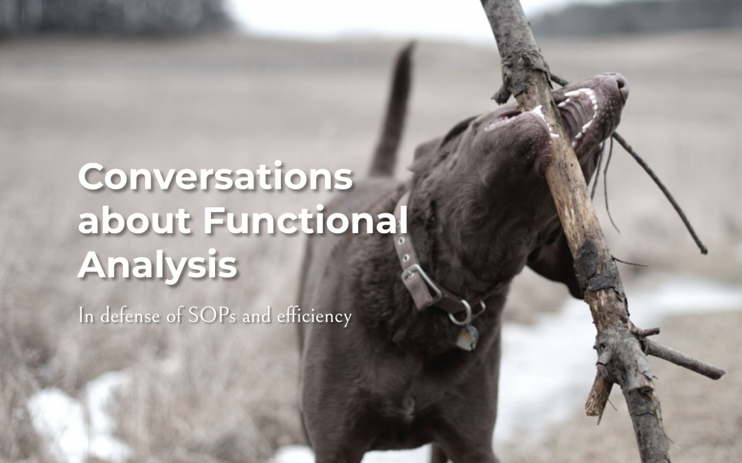 Conversations About Functional Analysis